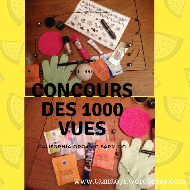 CONCOURS DES 1000 VUES.png