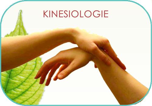 kinesiologie.jpg.png
